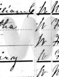 Fairy Nichels - 1880 US Census