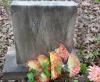 """Orlena D. """"Arline"""" Phelps - grave marker"""