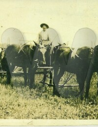 Andrew J. Hines driving wagon