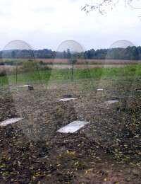 Givens Cemetery