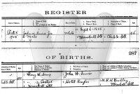 John W. Lewis, Jr. - birth record