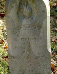 Frances Sebastian Embry - grave marker