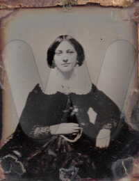 Ann E. Cooke Hines